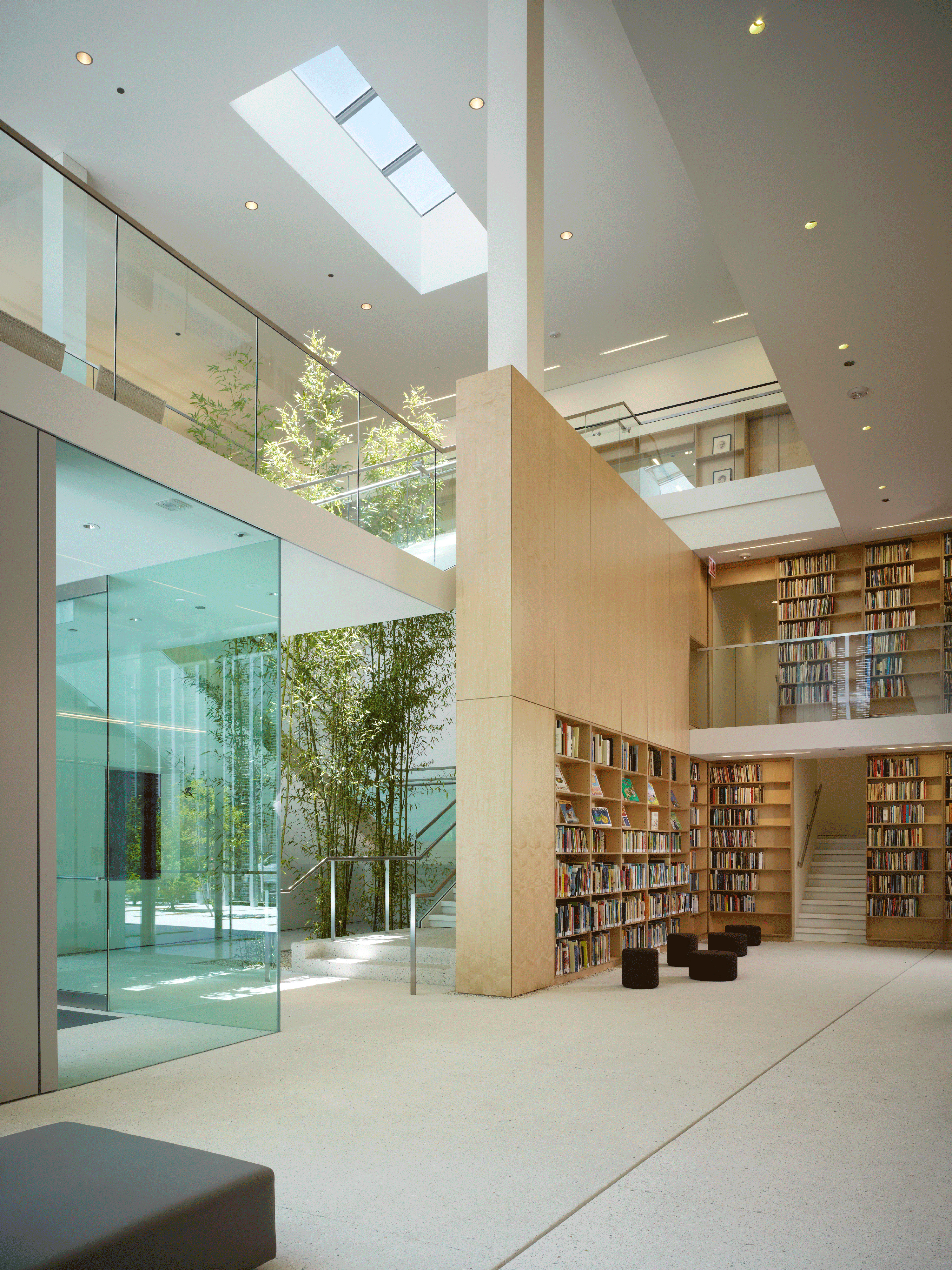 Light-filled atrium with duplex bookshelf, plants and open space