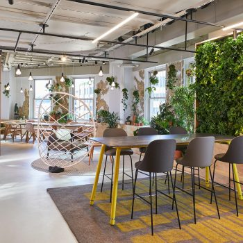 Bringing Walls to Life: Sagegreenlife Elevates the Art of Plant Design