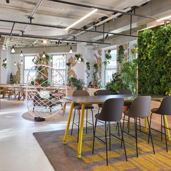 Bringing Walls to Life: Sagegreenlife Elevates the Art of Plant Design