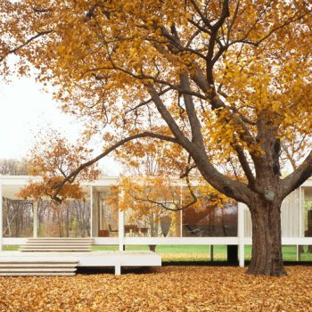 Looking Back: The Farnsworth House Story