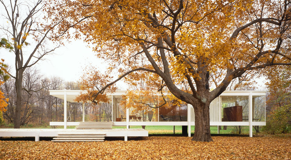 Farnsworth House's open glass layout shown with fall leaves.